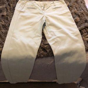 Mint LOFT trouser pants